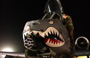 A-10 Thunderbolt II beat up nose